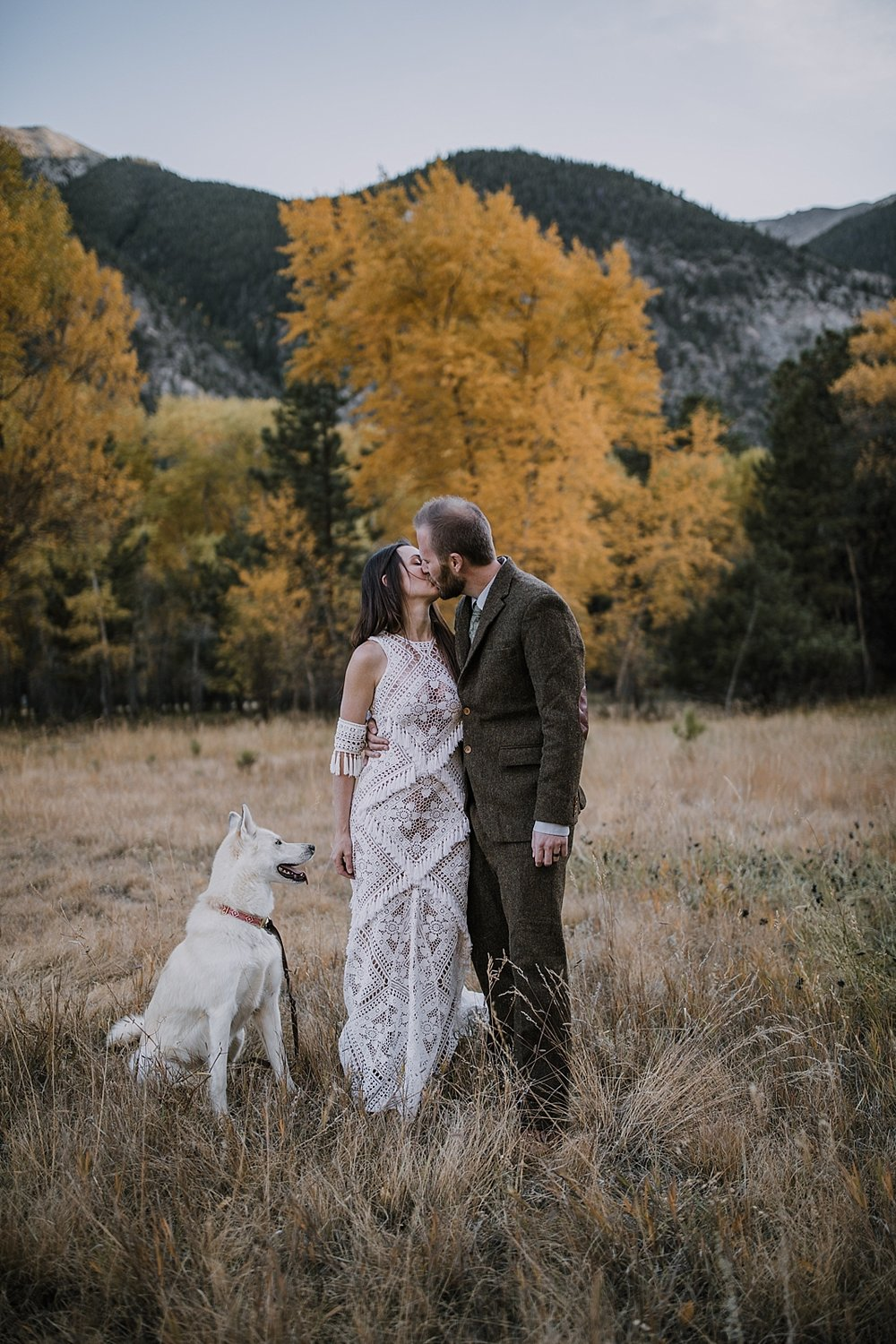 blue eyed husky, couple hiking, norway elopement, post elopement celebration, wedding in the woods, buena vista elopement, buena vista wedding, nathrop colorado wedding, elope with your dog