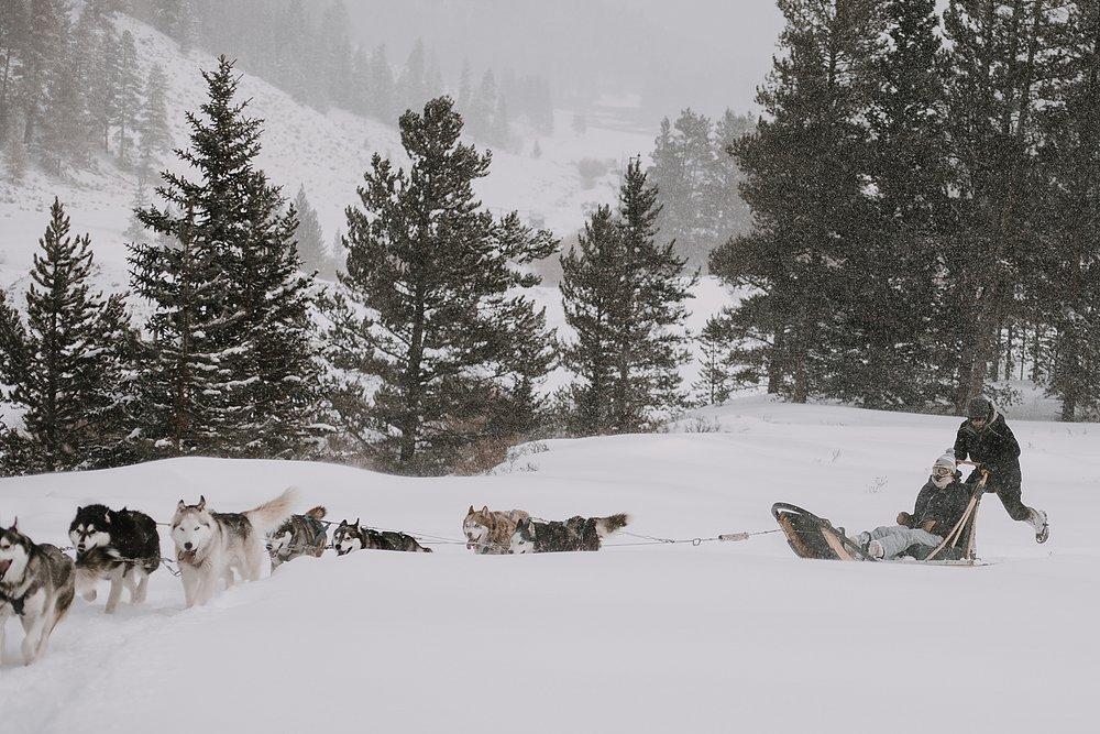 siberian husky dogsledding, sled dog, dogsledding, winter, winter elopement, winter wedding, breckenridge colorado photographer, colorado dog sledding, dogsledding elopement, snowmobiling elopement