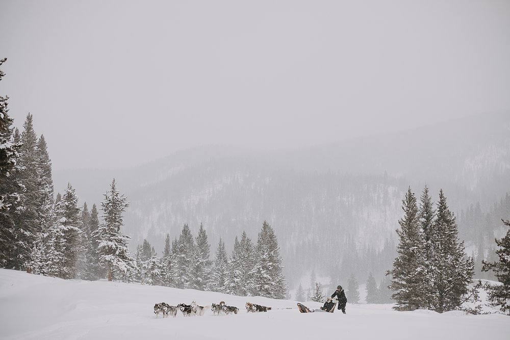 wooden dog sled, sled dog, dogsledding, winter, winter elopement, winter wedding, breckenridge colorado photographer, colorado dog sledding, dogsledding elopement, snowmobiling elopement