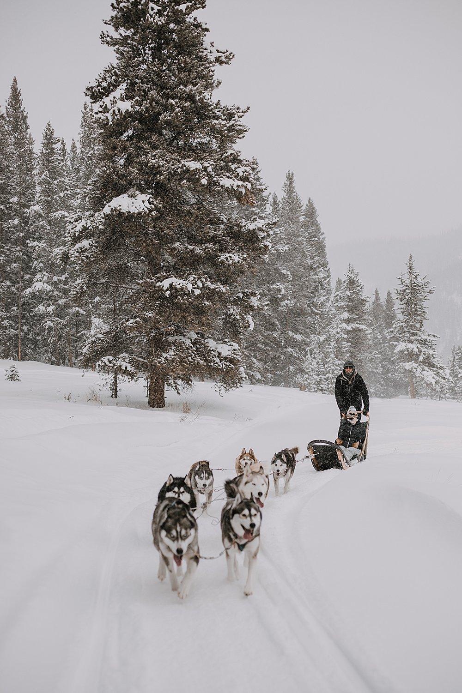 wooden dog sled, sled dog, dogsledding, winter, winter elopement, winter wedding, breckenridge colorado photographer, colorado dog sledding, alaska, dogsledding elopement, snowmobiling elopement