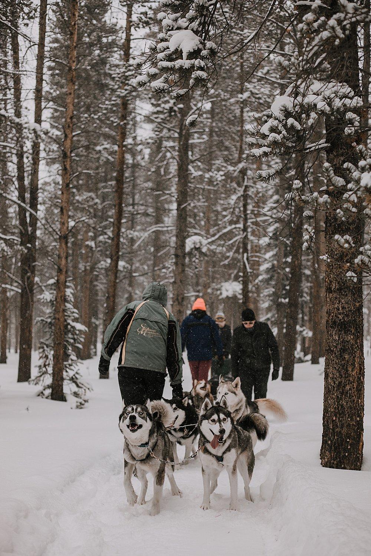 dogsledding proposal, sled dog, dogsledding, winter, winter elopement, winter wedding, breckenridge colorado photographer, colorado dog sledding, alaska elopement, snowmobiling elopement