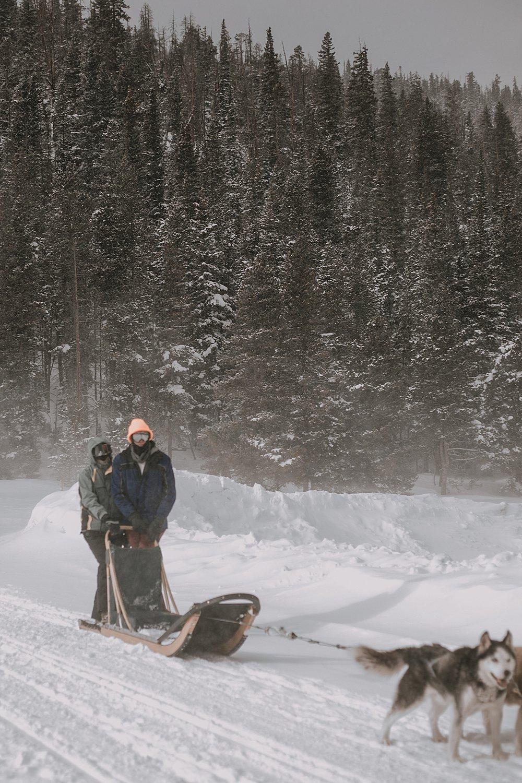 siberian husky, sled dog, dogsledding, winter, winter elopement, winter wedding, breckenridge colorado photographer, colorado dog sledding, alaska  elopement, snowmobiling elopement