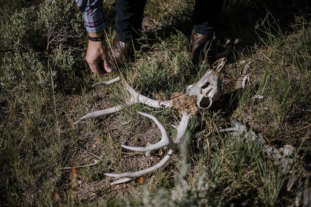 deer skull, RMNP elopement ceremony, rocky mountain national park elopement, 3M curves elopement, self solemnizing, self solemnization, long's peak, summer elopement, estes park elopement