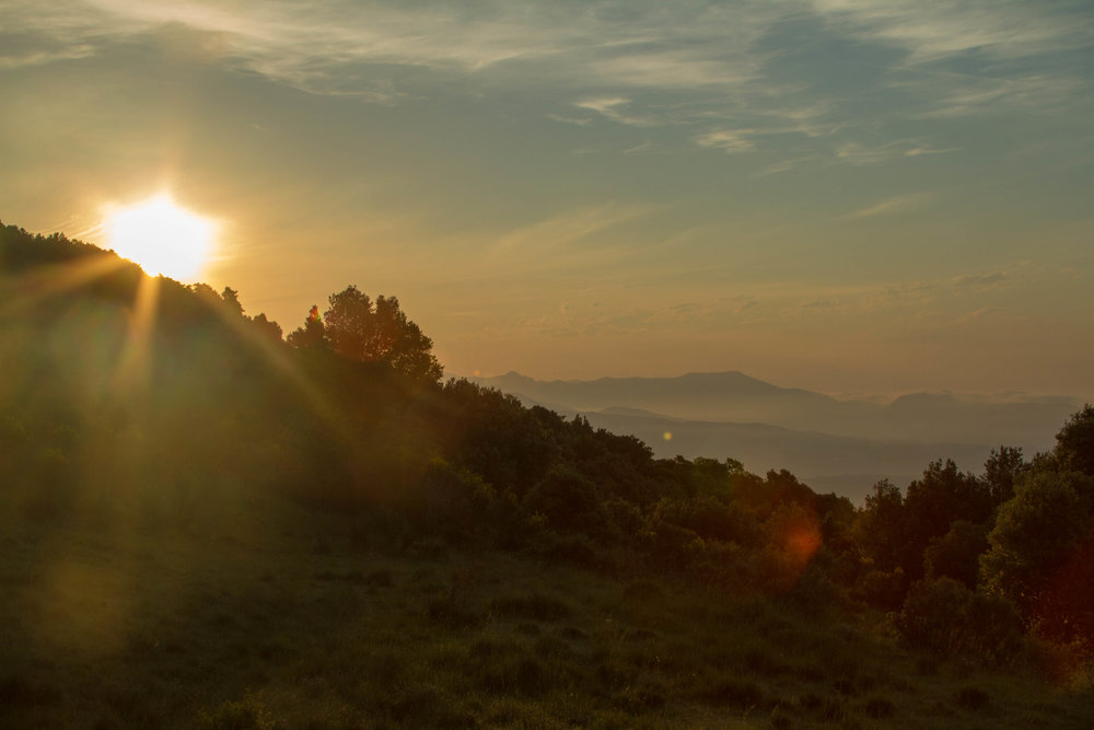 French Sunrise.jpg