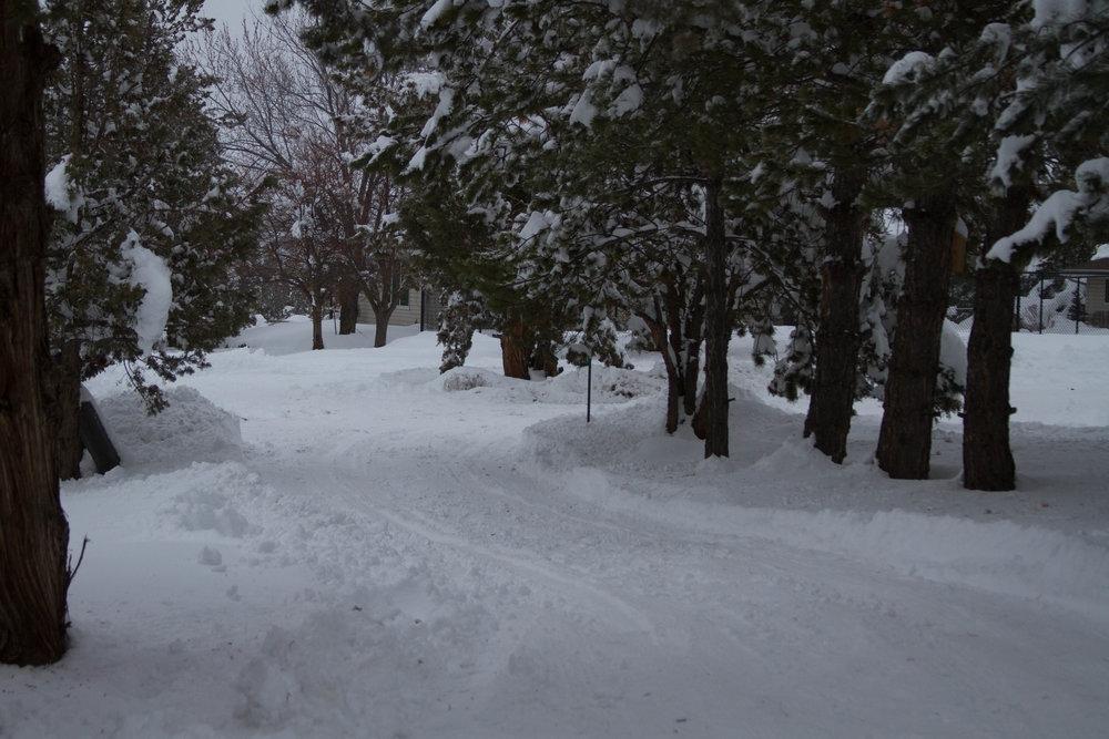 Driveway_Snow.jpg