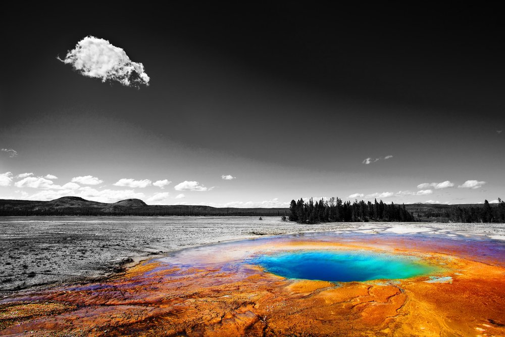 The Lowest Lifeform   Yellowstone National Park