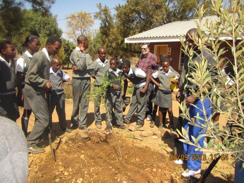 School awareness programs - Arbor day.jpg