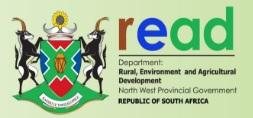 Logo READ.jpg