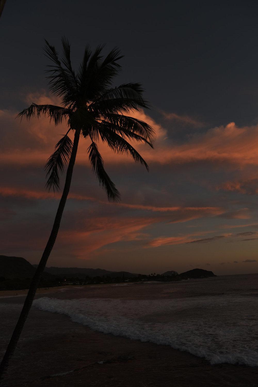 Hawaii2018-237.jpg