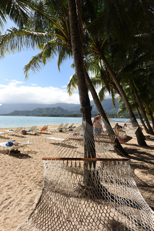 Hawaii2018-2346.jpg