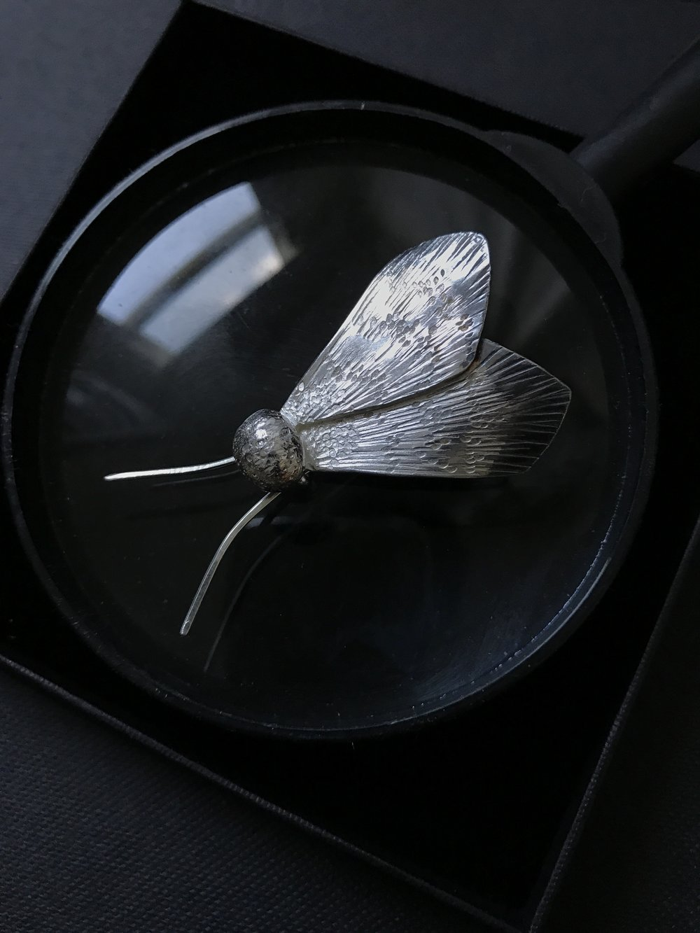 Tuesday Moth Brooch
