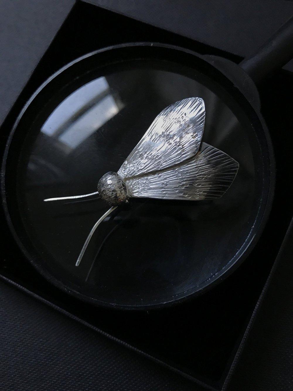 Tuesday Moth Brooch