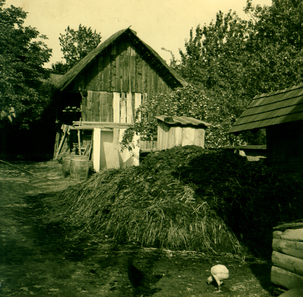 Photo by Gustav Rehberger in 1937