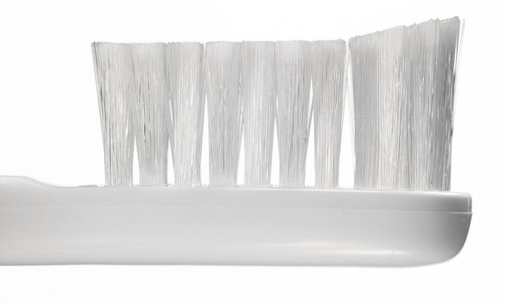 bristles-silod.jpg
