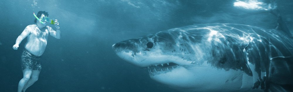 snorkler-and-great-white-shark-teaser.jpg