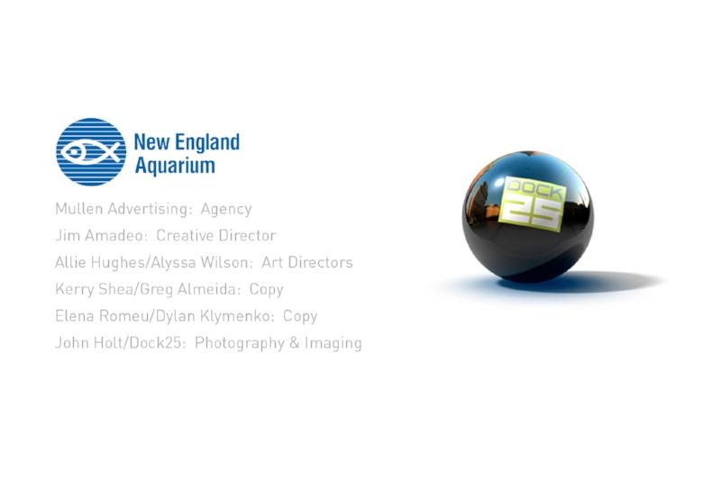 NE-Aquarium.jpg