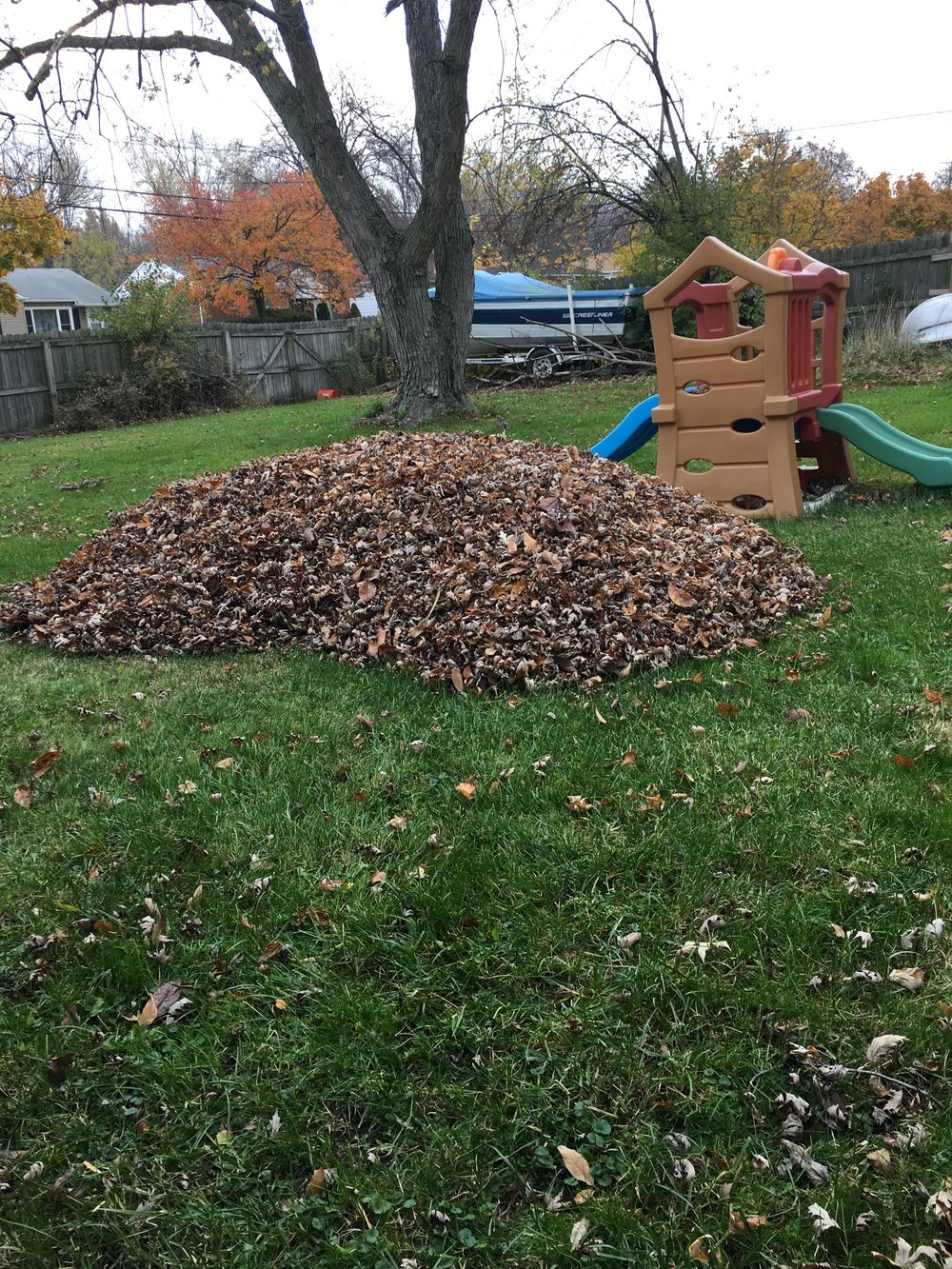 leaf removal cleanup twinsburg