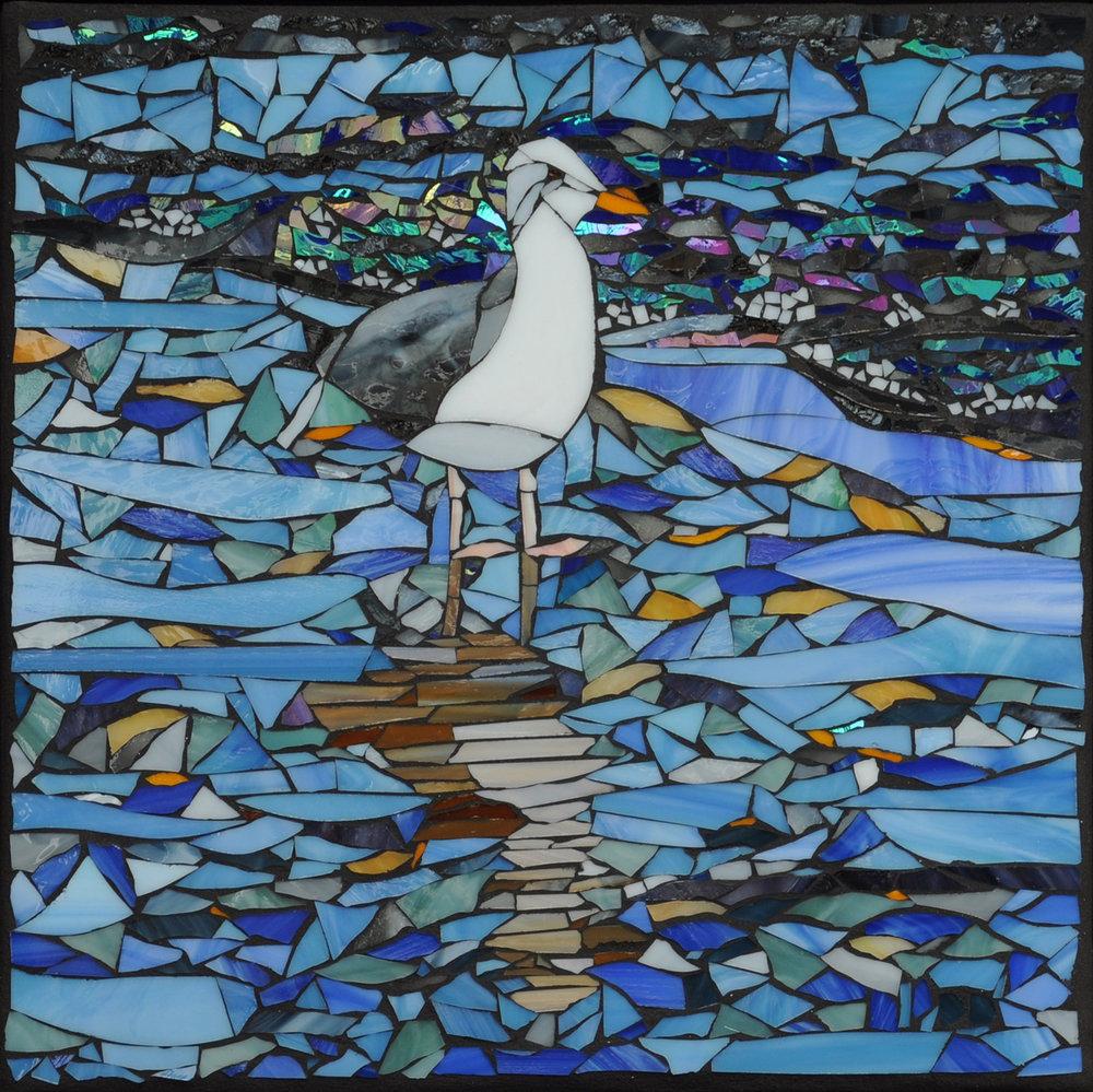 Seagull at Cowell's Beach