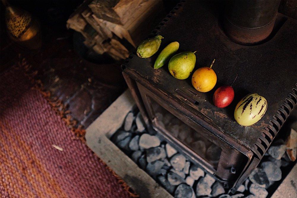 Local Ecuadorian fruits to try