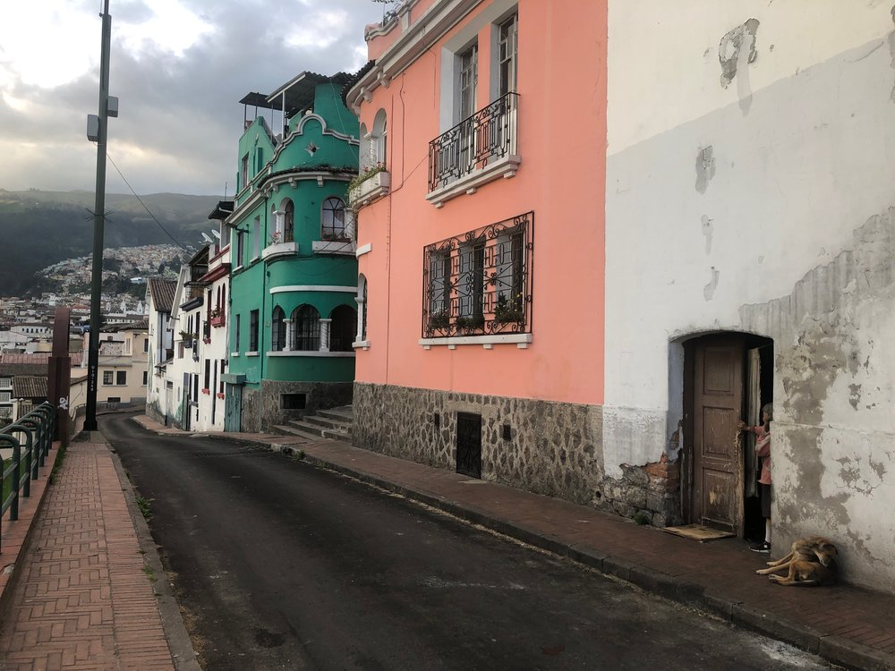 Colorful, dog-filled streets of Quito
