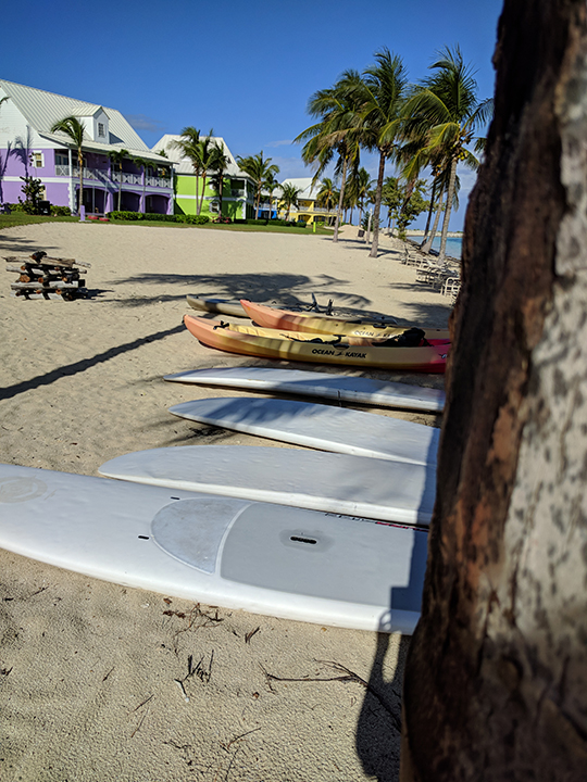 Paddle boards, kayaks and surf boards.