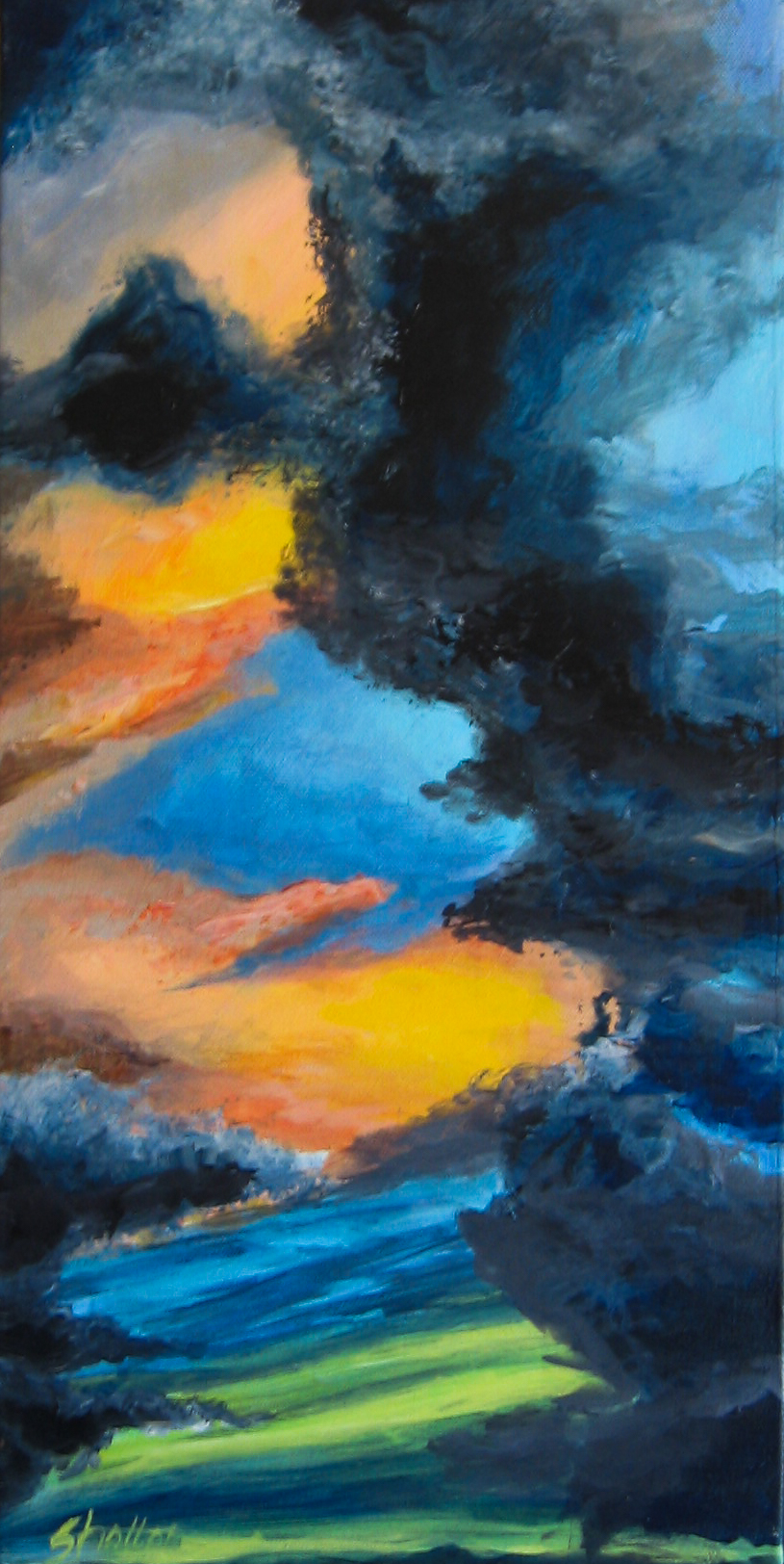 Just Ducky.....watching clouds move is like watching God paint.                  10 x 20                          $180.