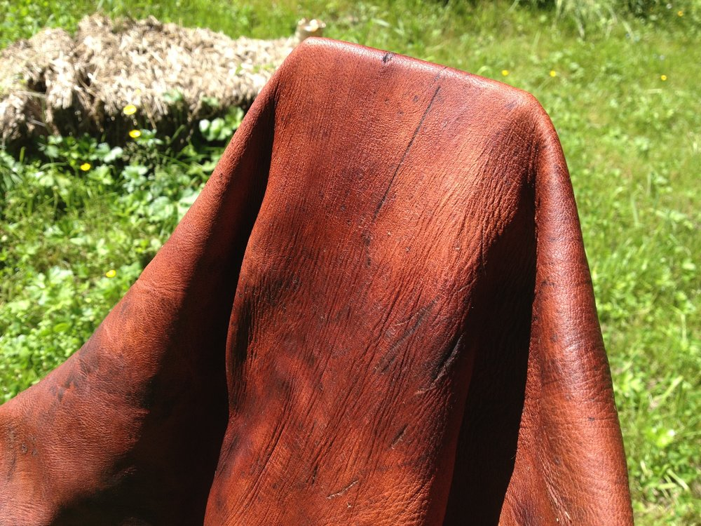 Bark-Tanned Deer Hide