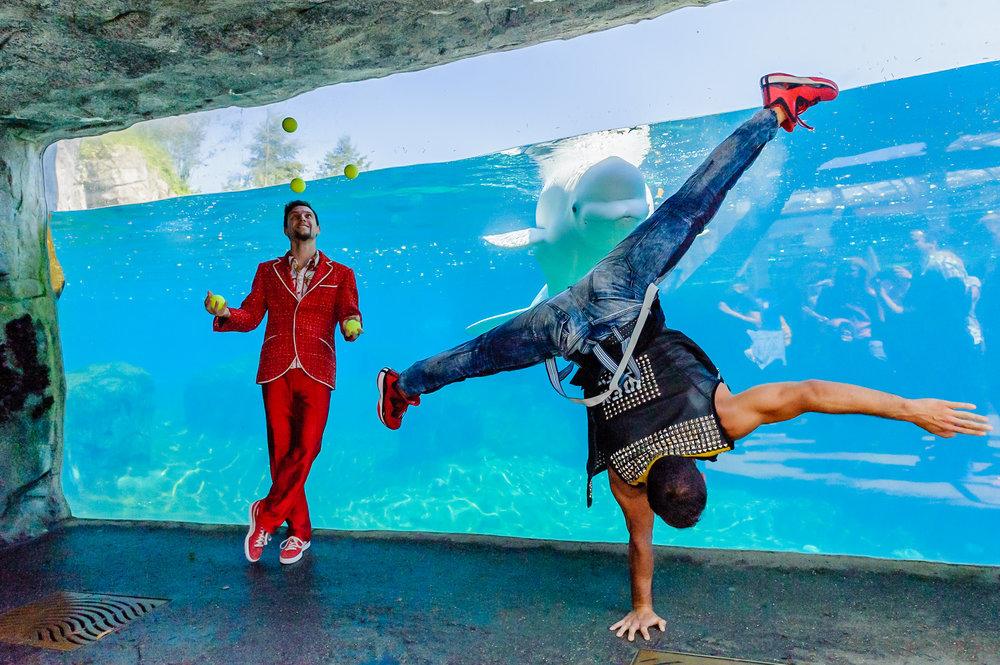 1082_blu_Cirque_Eloize@Mystic_Aquar.jpg