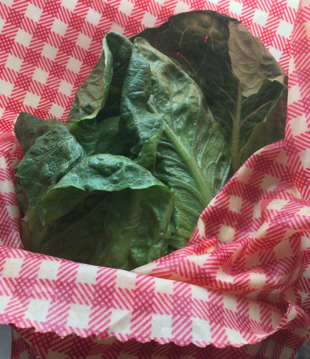 how to make reusable food wraps — Blog —Jenny Joy's Soap