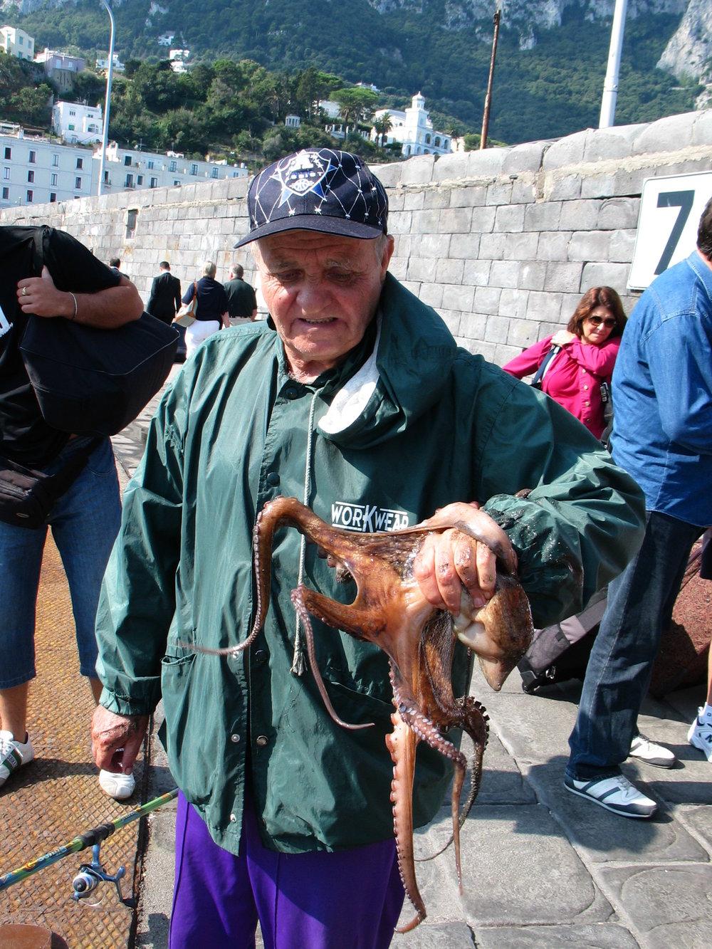 Octopus, Isle of Capri
