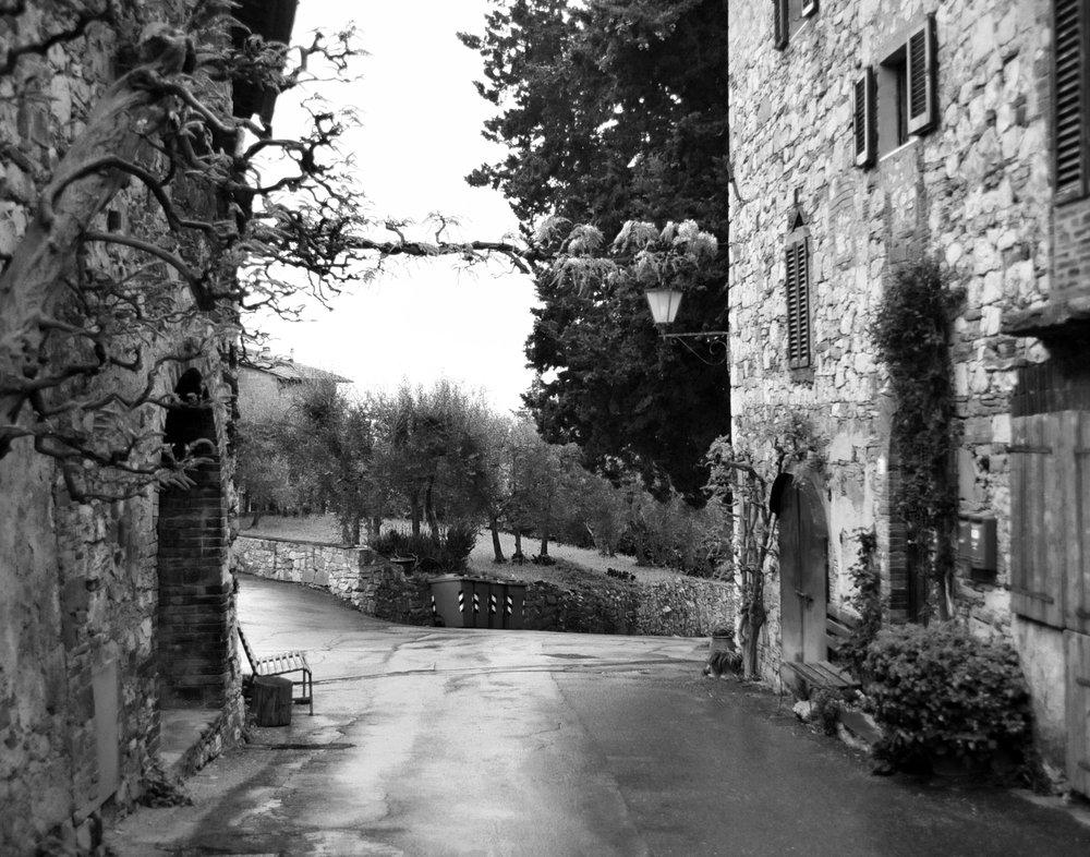 Fonterutoli, Tuscany