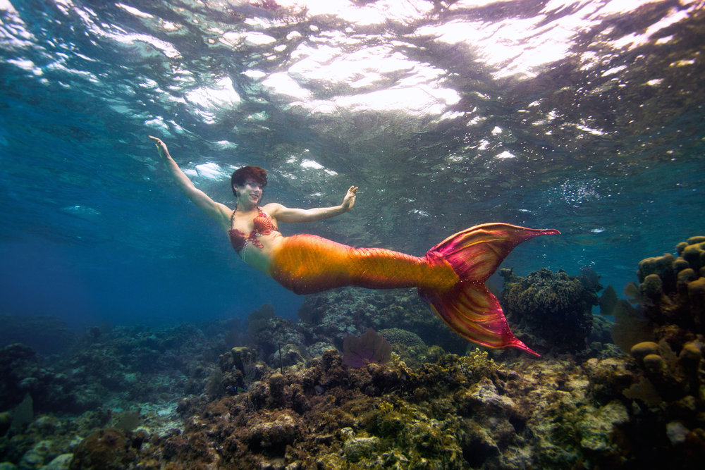 Belize Mermaid Retreat 2016-131-(ZF-9169-99823-1-007).jpg