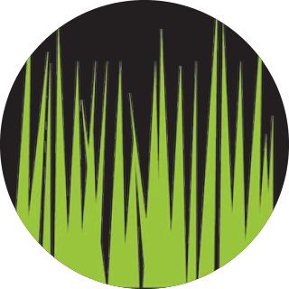 Organic Lawn   WORKSHOP    May 7, 2017