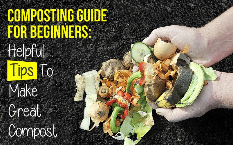 compost550.jpg
