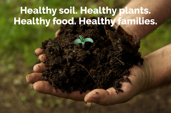 Healthy Soil.png