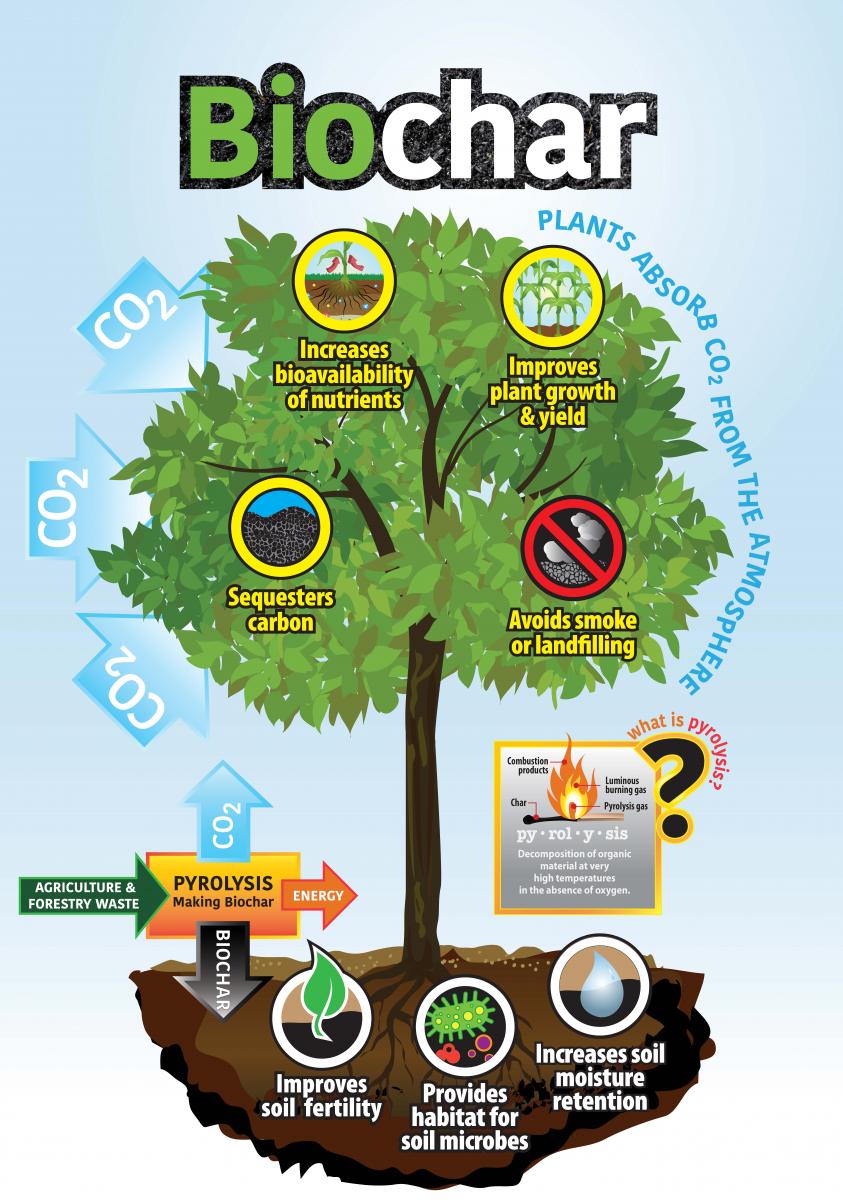Biochar Benefits Infographic.png