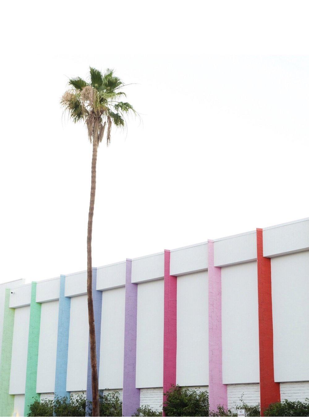 The Saguaro Group - Palm Springs