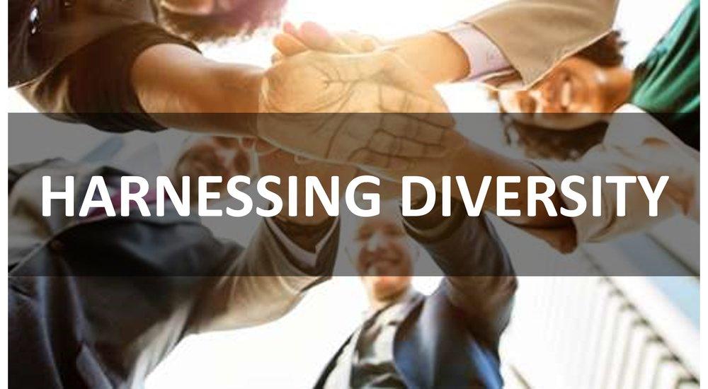 Harnessing Diversity.jpg