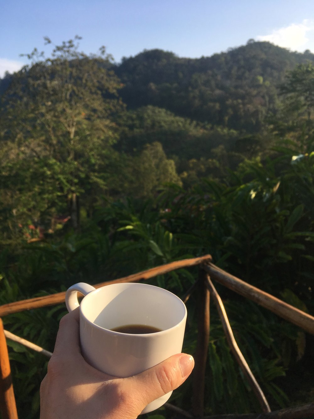 Morning sipping at Finca Carrizal.