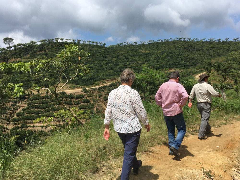 Maureen, Mike and Ricardo walking to inspect various pruning styles at Finca Carrizal.