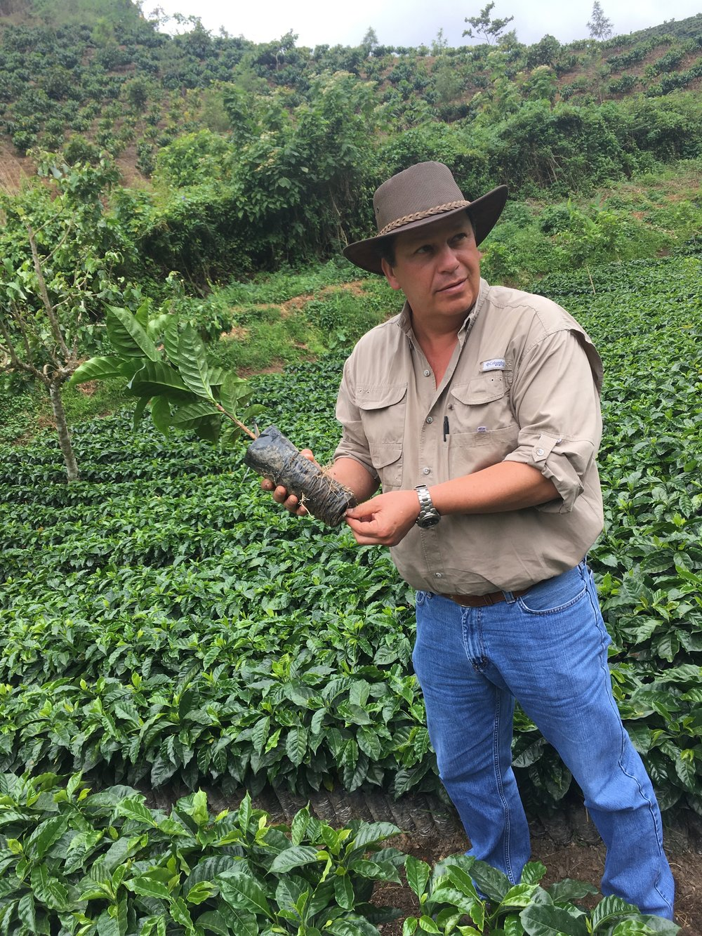 Visiting the nursery and seedling farms near Finca Carrizal.