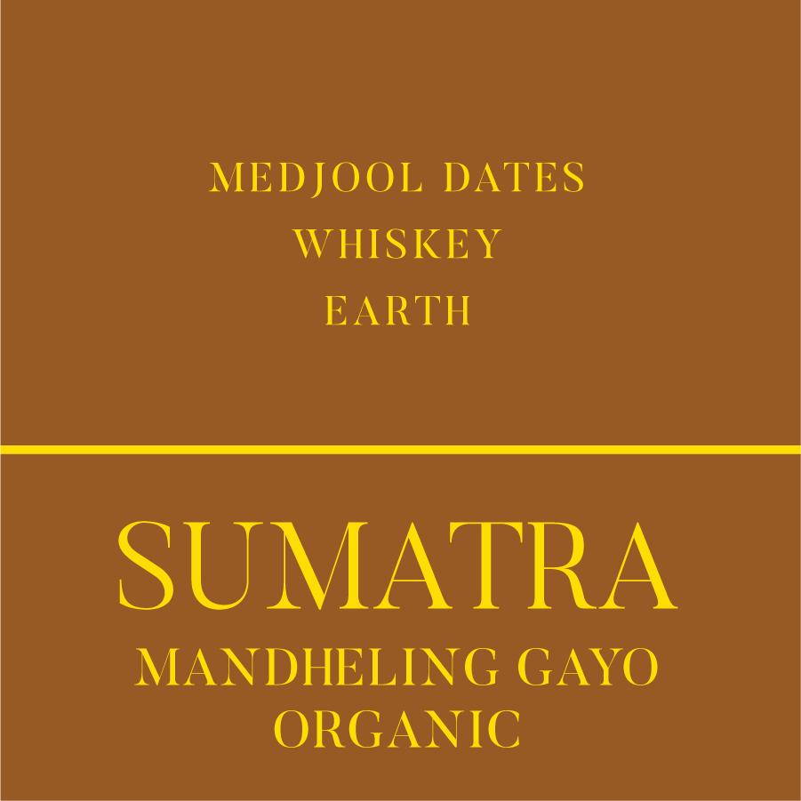Sumatra Mandheling Organic Coffee