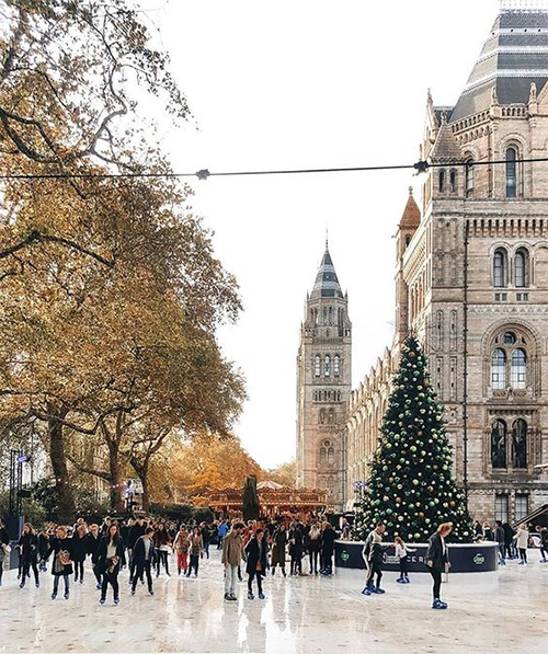 The beautiful Ice Rink at the Natural History Museum