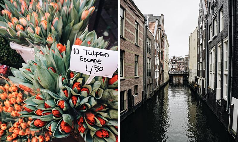 Theseptemberchronicles_amsterdam_tuliopduo.jpg