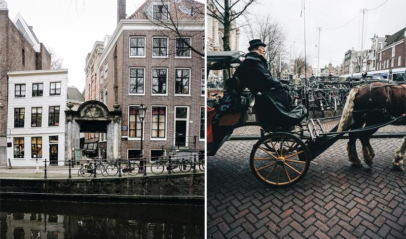 Theseptemberchronicles_amsterdam_horseduo.jpg