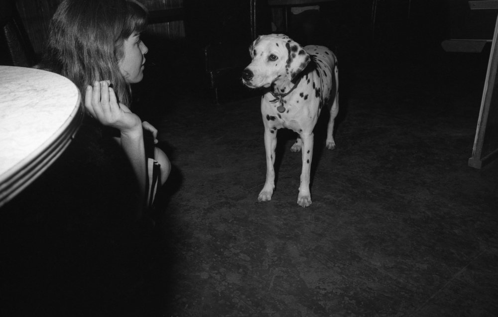 A dog at Al's Bar, Los Angeles, about 1981. (3/3)