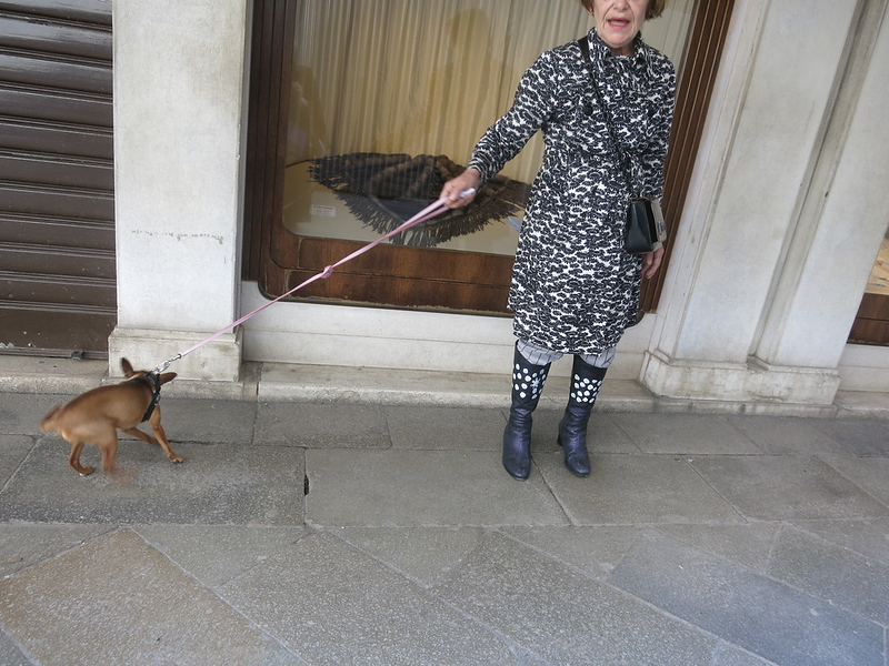 """Her name is Malva,"" said the lady about her little dog. Touring Venezia with Sir Clive, April 2018. #DressCode"