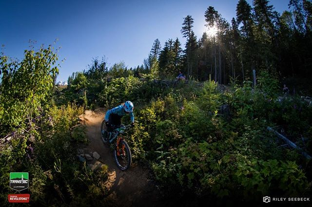 @caseybrowntown chasing the sun down Stage 5 on Day 5. // @transbcenduro #transbcenduro #mtb #revelstoke #britishcolumbia