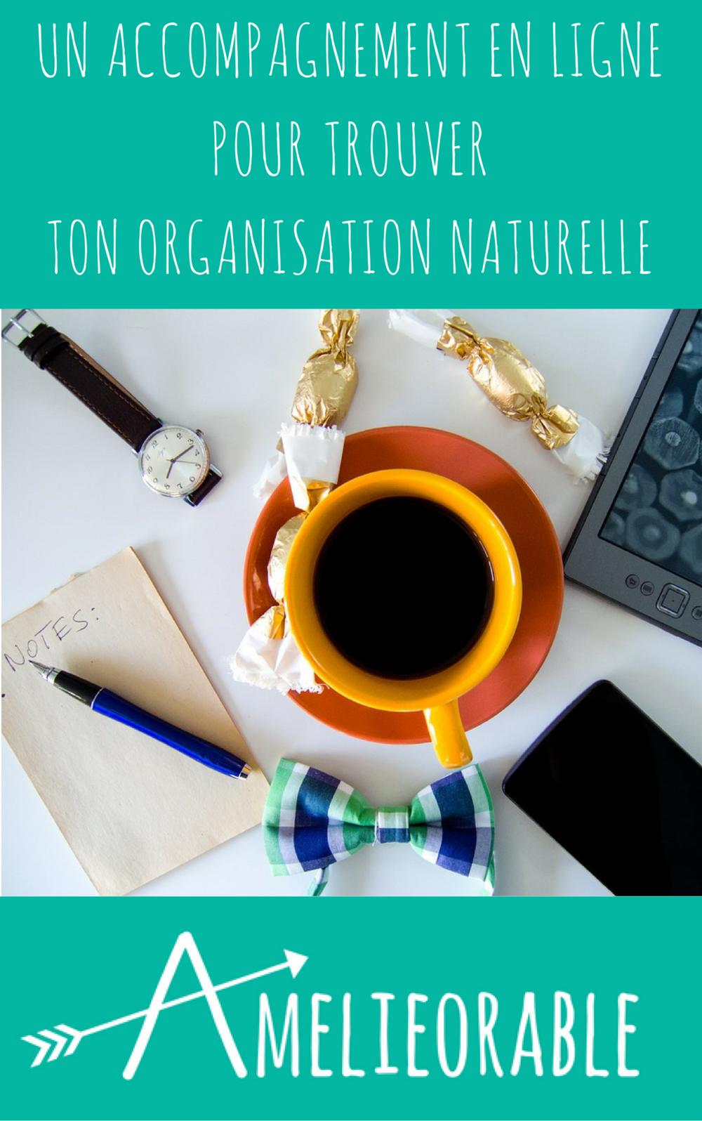 Organisation - Accompagnement en ligne