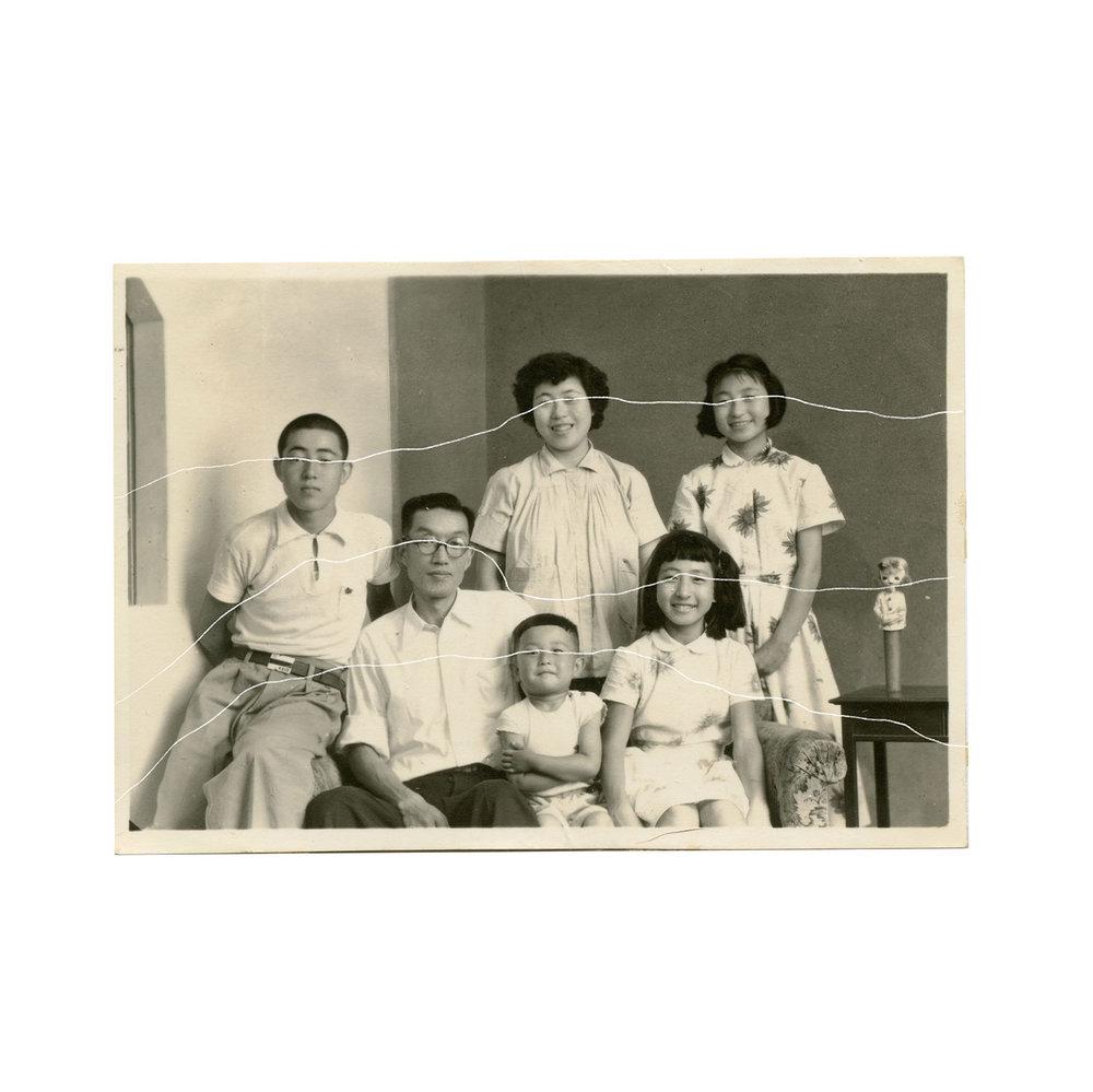Family_Lines_crop.jpg